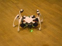 Oooh! Its a spider! A robot! A robot Spider!